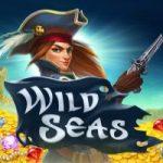 Wild Seas gokkast