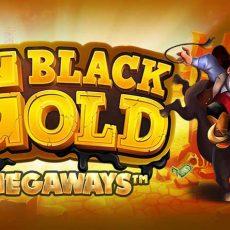 Black Gold Megaways™ gokkast Stakelogic